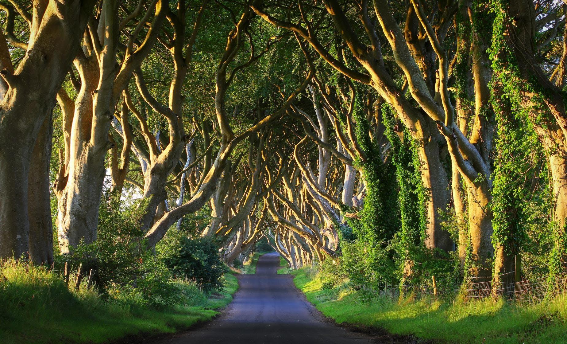 Game of Thrones Location Tour